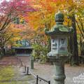 Photos: 呑山観音寺の紅葉10