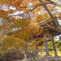 呑山観音寺の紅葉16
