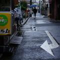 Photos: 雨のパルム通り