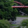 写真: 紅イ橋