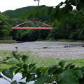 写真: 紅イ橋 2