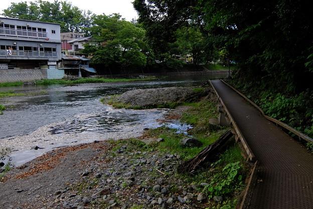 対岸の遊歩道