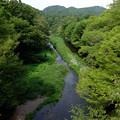 写真: 岩根橋より望む