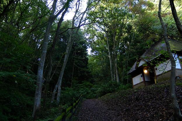 山中の一軒家