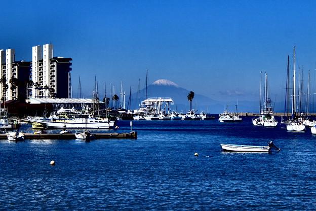 港越しに見えた富士山1.1