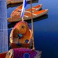 木靴を模した舟