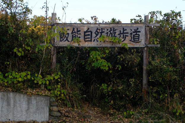 飯能 (201)