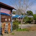 Photos: 都幾川 (8)