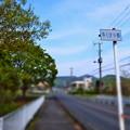 Photos: 都幾川 (15)