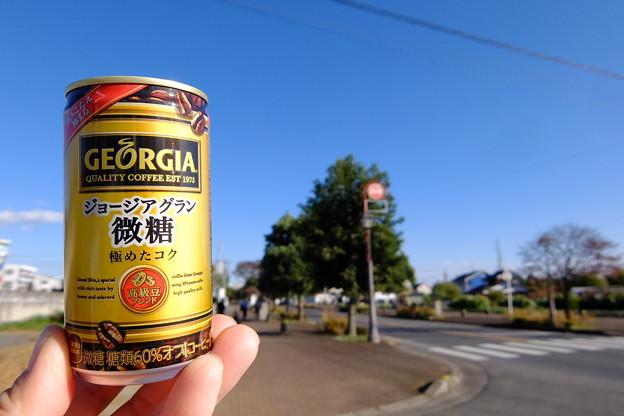 埼玉 (66)