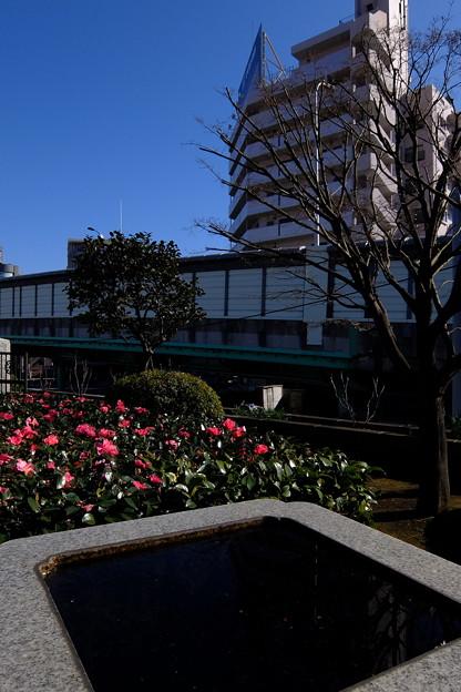 板橋 (70)