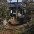 Photos: 丘陵 (89)