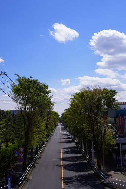 Photos: 東久留米 (3)