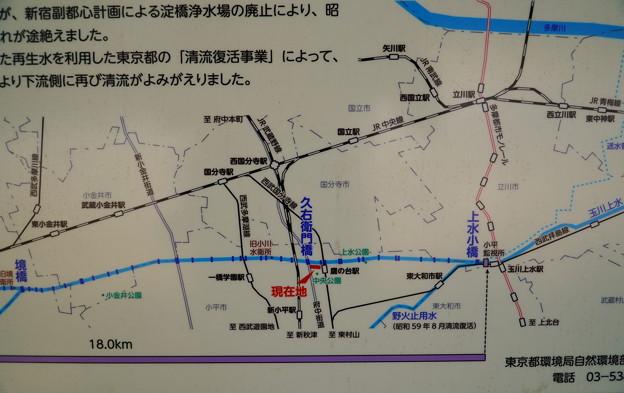 桜橋から (22)