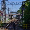 Photos: 桜橋から (27)