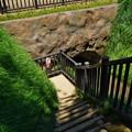 Photos: 桜橋から (42)