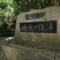 Photos: 桜橋から (47)