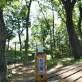 Photos: 桜橋から (53)