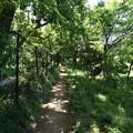 Photos: 桜橋から (57)