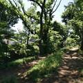 Photos: 桜橋から (61)