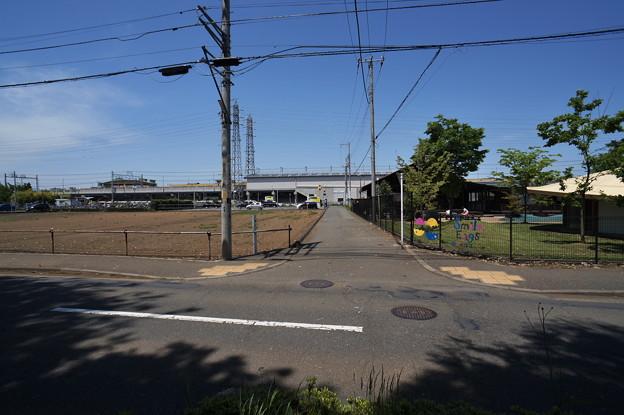 桜橋から (64)