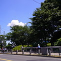 Photos: 桜橋から2 (38)