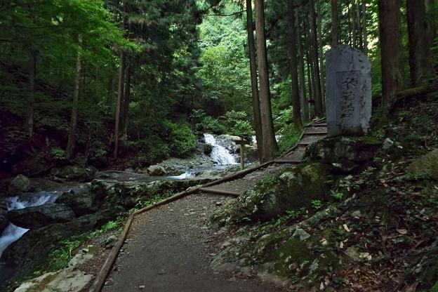 Photos: 秋川 (31)