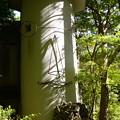 Photos: 秋川 (55)