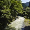 Photos: 秋川 (65)