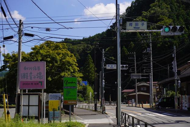 Photos: 秋川 (71)