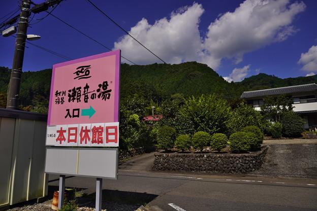 Photos: 秋川 (74)