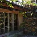 Photos: 秋川 (75)