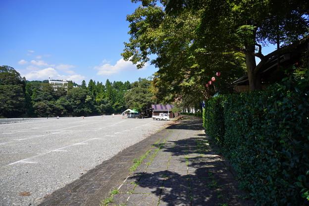 Photos: 秋川 (106)