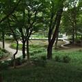 初秋の中央公園篇