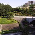 Photos: 続城山 (48)