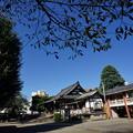 Photos: 沿線 (64)