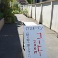 Photos: 沿線 (91)