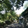 Photos: 沿線 (106)