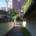 Photos: 沿線 (114)