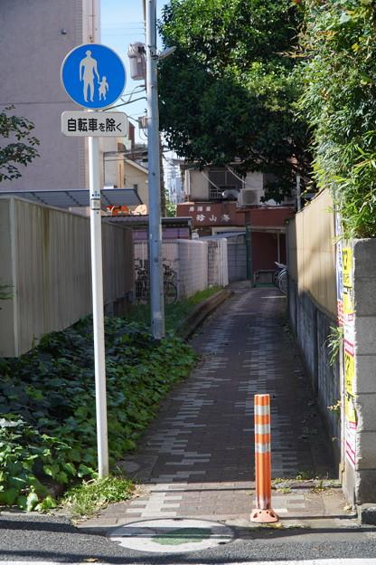 Photos: 沿線 (115)