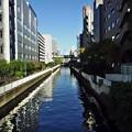 Photos: レ橋 (3)