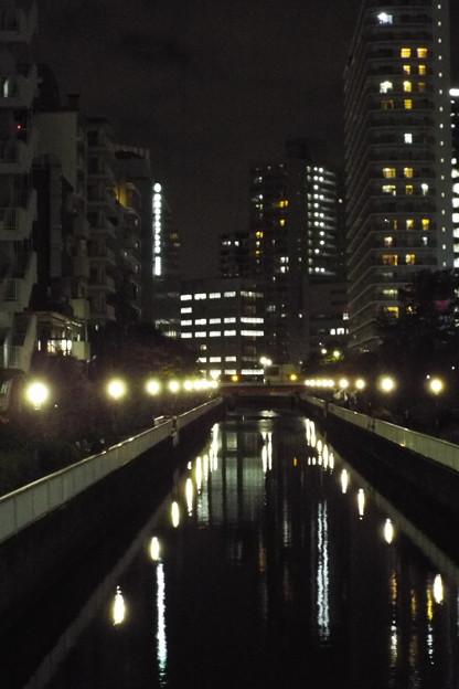 Photos: レ橋 (51)