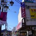 Photos: あきる野 (102)