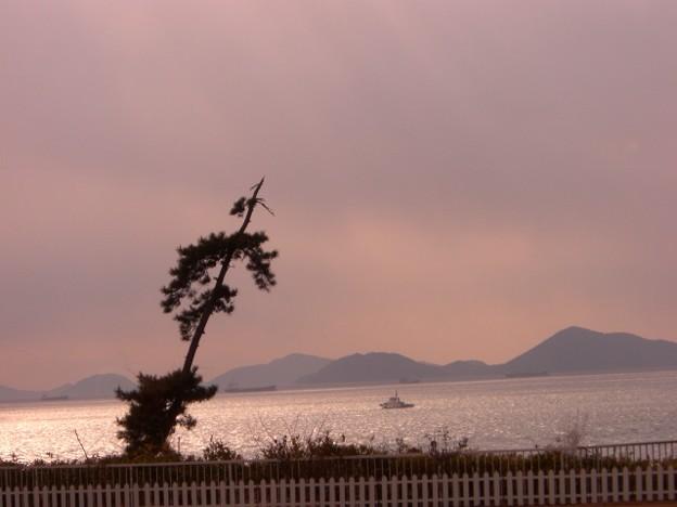 海が見える夕景の風景
