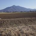 写真: トンガリお山