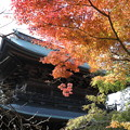 Photos: 染まる円覚寺