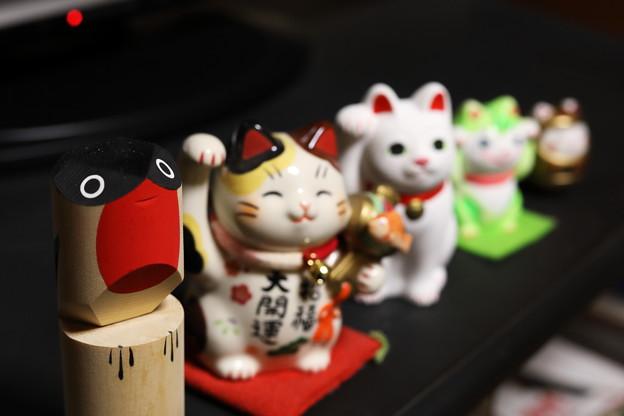 Photos: 集合!
