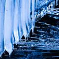 Photos: 凍つく