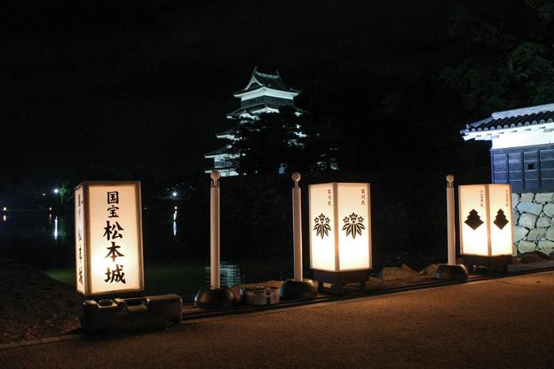 闇夜の烏城