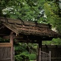 写真: '18_06_28 M3_kouzenji-024 (2)